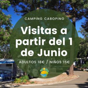 VISITAS CAMPING CABOPINO
